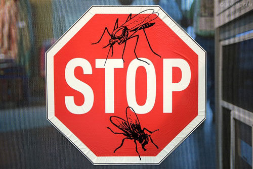 Keep away from mosquitoes